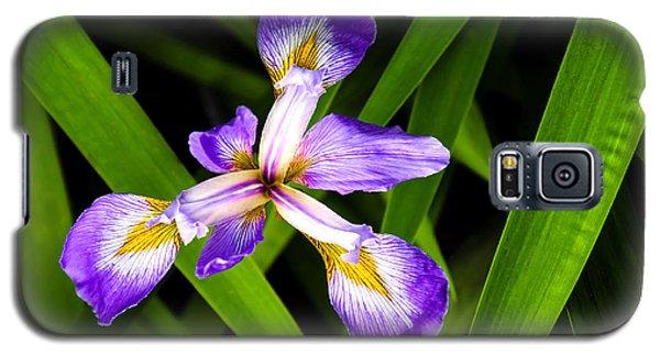 Iris Pinwheel Galaxy S5 Case