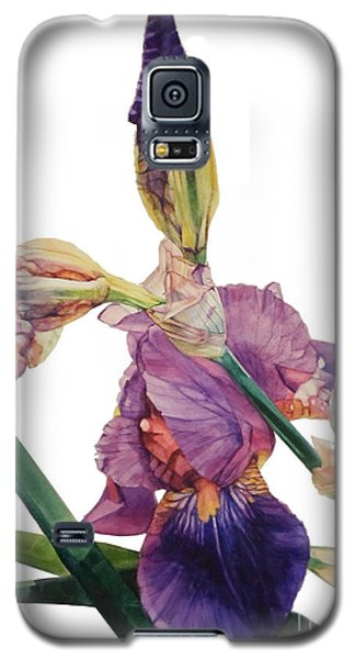 Watercolor Of A Tall Bearded Iris In A Color Rhapsody Galaxy S5 Case