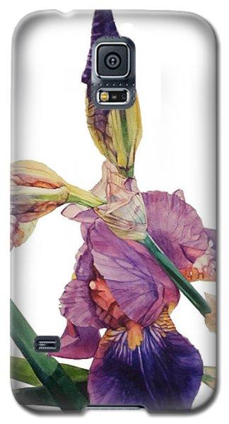 Iris Rhapsody Galaxy S5 Case by Greta Corens