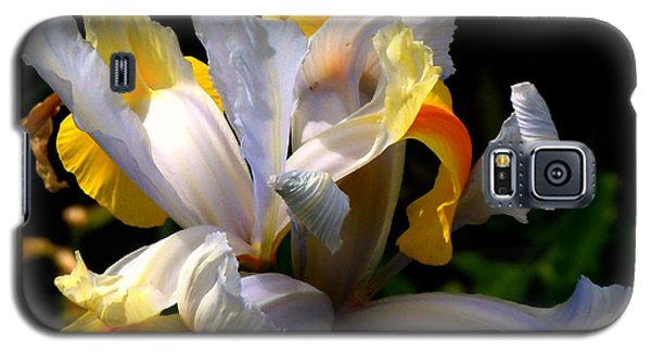 Iris Galaxy S5 Case by Rona Black