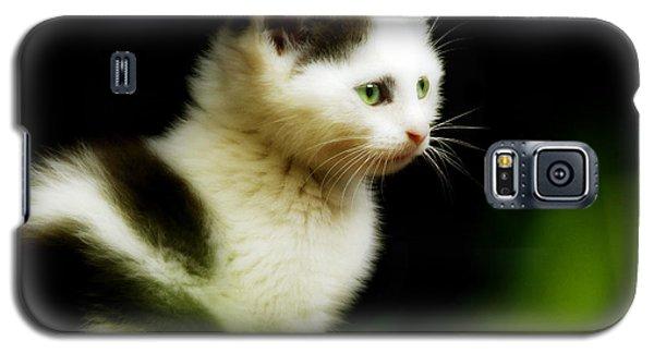 Galaxy S5 Case featuring the photograph Iris by Selke Boris