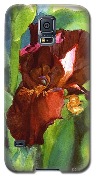 Watercolor Of A Tall Bearded Iris In Sienna Red Galaxy S5 Case
