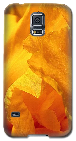 Iris Undulation Galaxy S5 Case by Rona Black