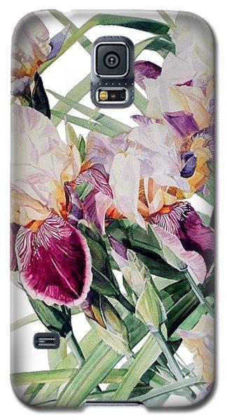 Watercolor Of Tall Bearded Irises I Call Iris Vivaldi Spring Galaxy S5 Case
