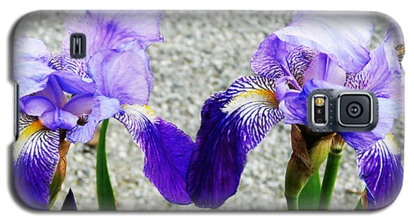 Galaxy S5 Case featuring the photograph Irises by Jasna Dragun