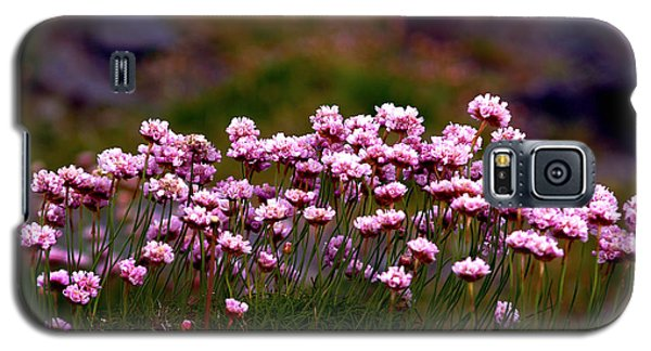 Irish Sea Pinks Galaxy S5 Case