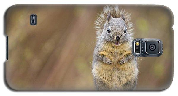 Irresistibly Cute Galaxy S5 Case