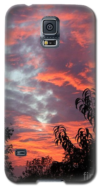 Is 14 Of 17 Galaxy S5 Case