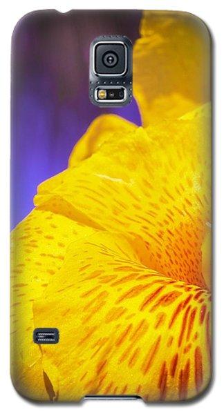 Island Beauty Galaxy S5 Case