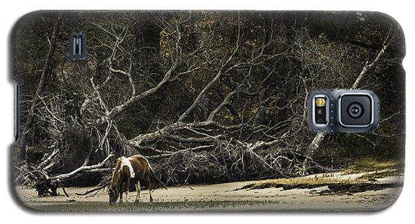 Island Pony Galaxy S5 Case