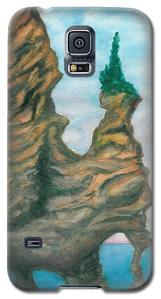 Island Right Galaxy S5 Case