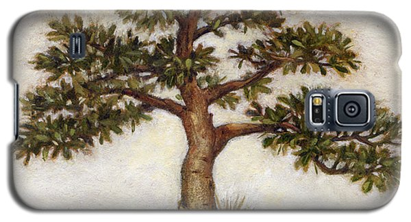 Island Tree Galaxy S5 Case