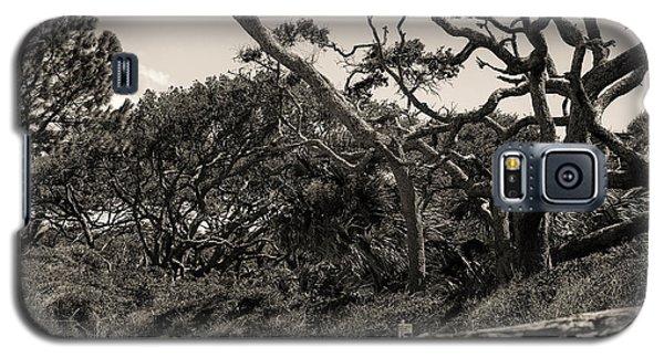 Island Trees Galaxy S5 Case