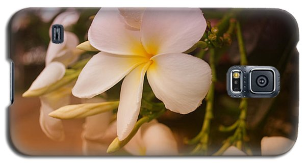 Galaxy S5 Case featuring the photograph Isle De Java by Miguel Winterpacht