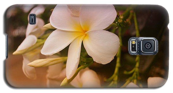 Isle De Java Galaxy S5 Case by Miguel Winterpacht
