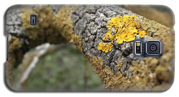 Isolated Lichen Galaxy S5 Case