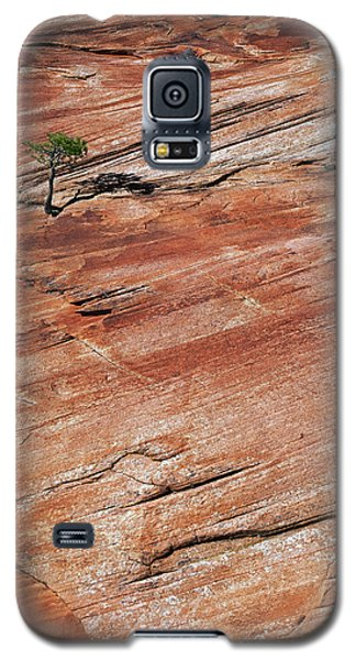Isolated View Galaxy S5 Case