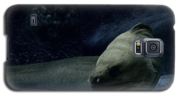 Galaxy S5 Case featuring the photograph It Came From Outer Space by Jeremy Martinson