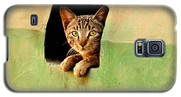 It Is My Home Galaxy S5 Case by Manjot Singh Sachdeva