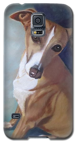 Italian Greyhound Galaxy S5 Case by Sharon Schultz