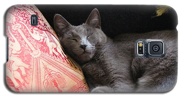 its a cats Life Galaxy S5 Case
