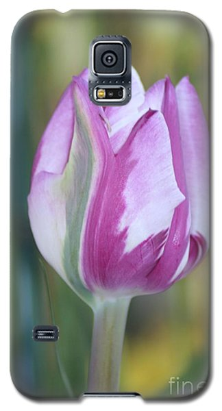 Galaxy S5 Case featuring the photograph It's A Gift To Be Simple by Mary Lou Chmura