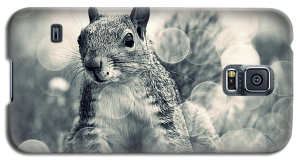 It's A Squirrel's World Too Galaxy S5 Case