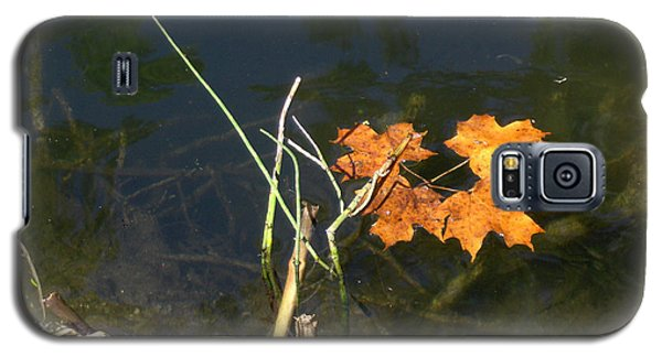 It's Over - Leafs On Pond Galaxy S5 Case by Brenda Brown