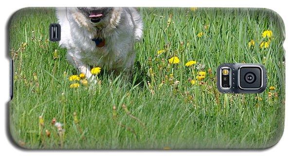 It's Spring - It's Spring Galaxy S5 Case