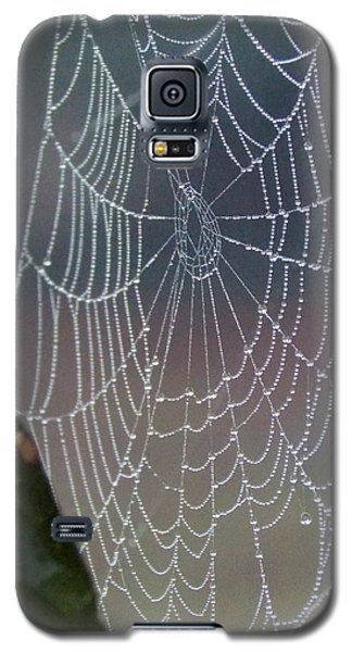 Galaxy S5 Case featuring the photograph Ittsy Bittsy Spider by John Glass