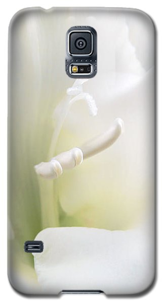 Ivory Gladiola Flower Galaxy S5 Case