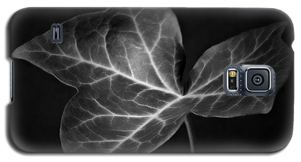Galaxy S5 Case featuring the photograph Black And White Flowers Macro Photography Art Work by Artecco Fine Art Photography