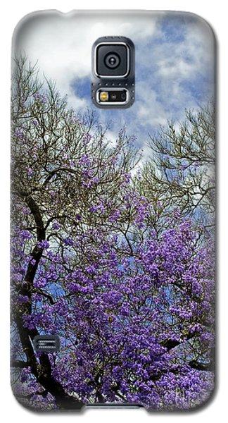 Jacaranda Galaxy S5 Case by Gwyn Newcombe