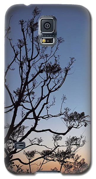 Jacaranda Sunset Galaxy S5 Case