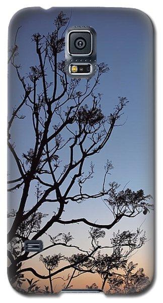 Jacaranda Sunset Galaxy S5 Case