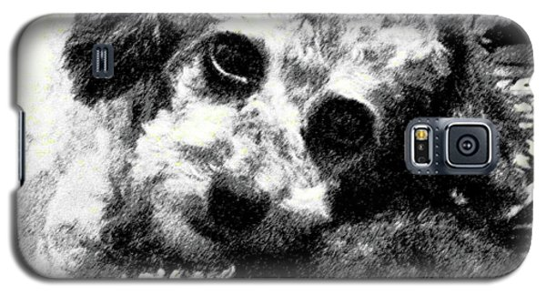 Galaxy S5 Case featuring the photograph Jack by Lenore Senior
