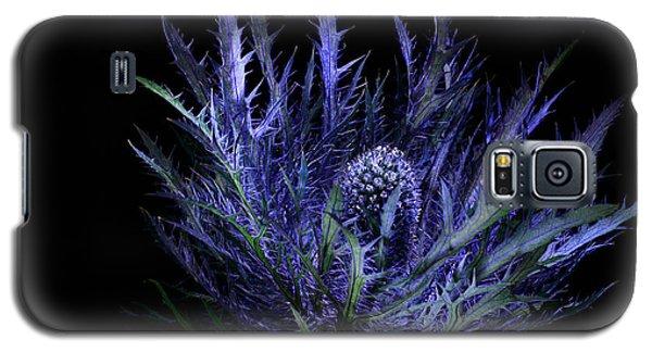 Jackpot Blue Thistle Galaxy S5 Case