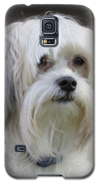 Jack's Bad Hair Day Galaxy S5 Case