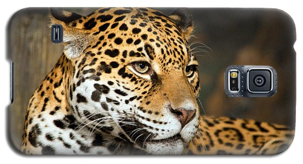 Jaguar Mom Galaxy S5 Case