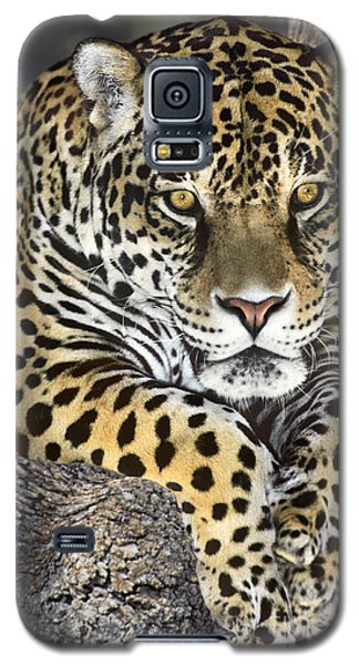 Jaguar Portrait Wildlife Rescue Galaxy S5 Case