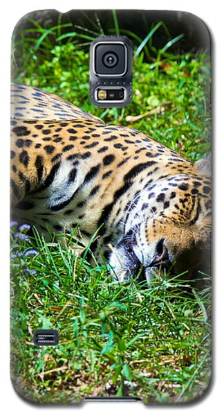 Jaguar's Slumber Galaxy S5 Case