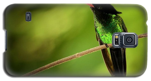 Jamaican Hummingbird 2 Galaxy S5 Case by Marjorie Imbeau