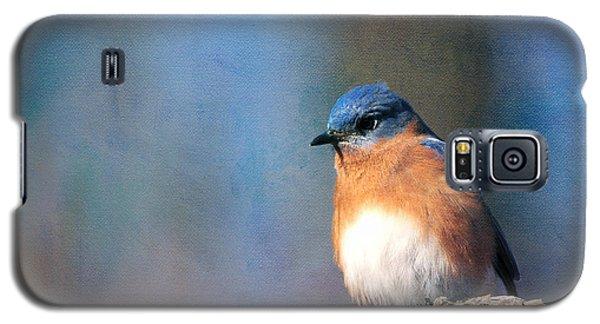 January Bluebird Galaxy S5 Case
