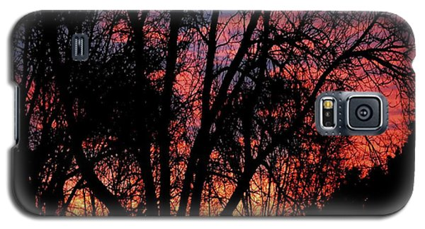Galaxy S5 Case featuring the photograph January Dawn by Luther Fine Art