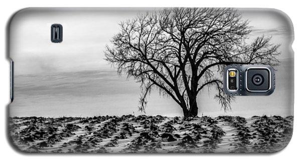 January Galaxy S5 Case by Penny Meyers
