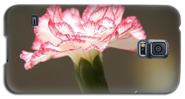 Galaxy S5 Case featuring the photograph January's Flower by Lynn England