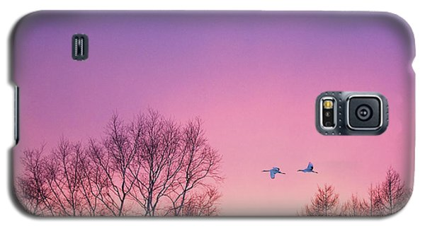 Japanese Cranes Flying To Roost Hokkaido Japan Galaxy S5 Case