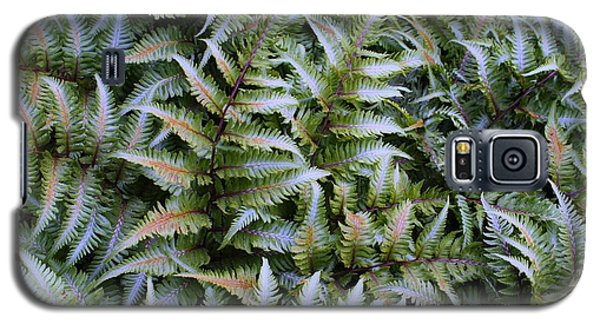 Galaxy S5 Case featuring the photograph Japanese Ferns by Kathryn Meyer