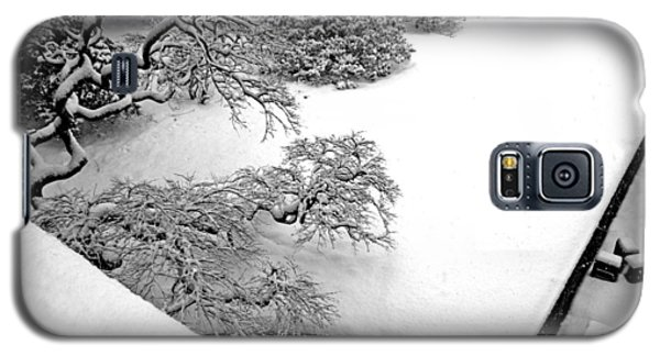 Japanese Maple Galaxy S5 Case by Bruce Rolff