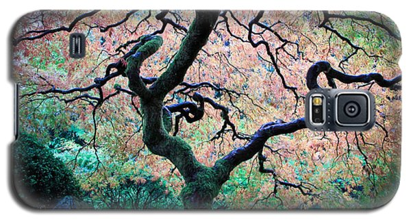Japanese Maple In Autumn Galaxy S5 Case by Athena Mckinzie